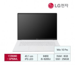 [LG전자] LG gram 17 B2B전용 17ZB990-GP50ML