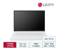 [LG전자] LG gram 17 B2B전용 17ZB990-GP75ML